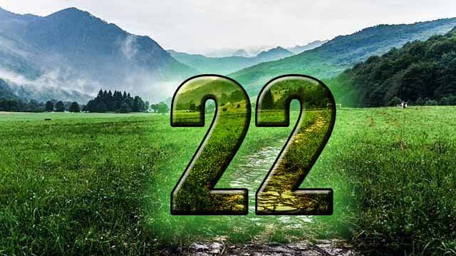 life path number 22 numerology center