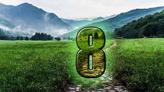 Life Path Number 8 - Numerology Center